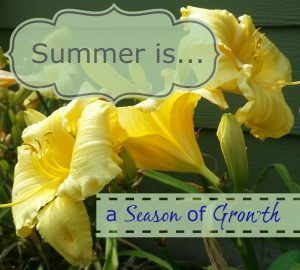 summer is growth